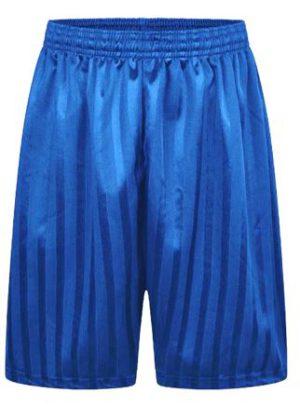 SHADOW STRIPE SHORTS - ROYAL, PE Shorts, Branfil, Hylands, Langtons Infant